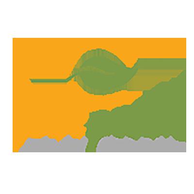 EverGreen Salon Organic